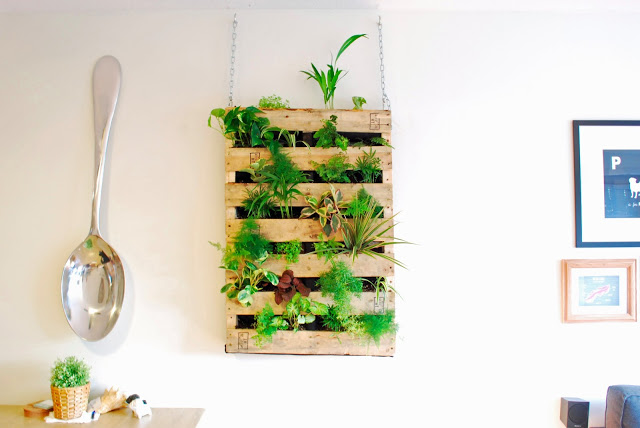 Living Wall Pallet