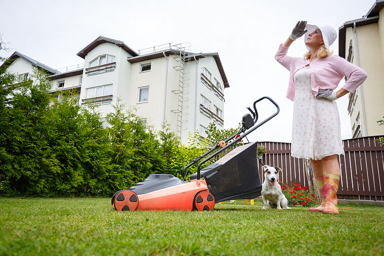 How To Have The Best Lawn On The Block Reliable Remodeler