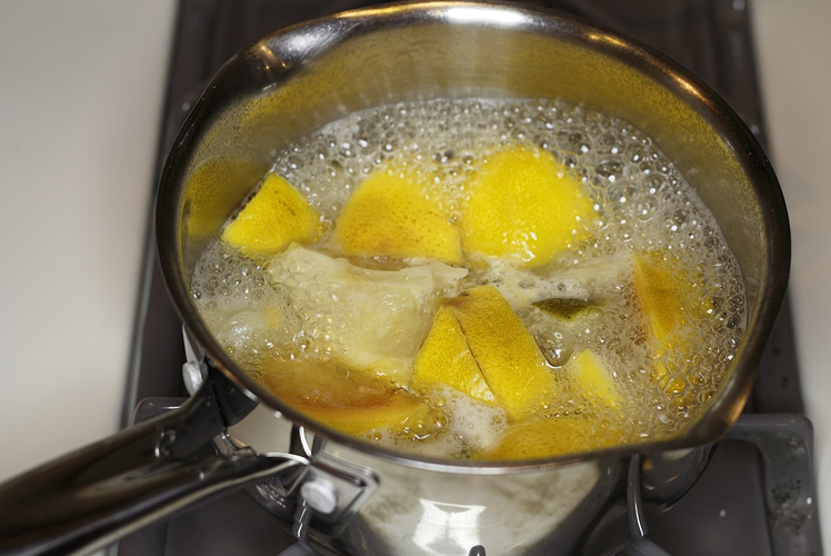 make your house smell like lemons