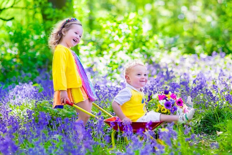Make a Sensory Garden