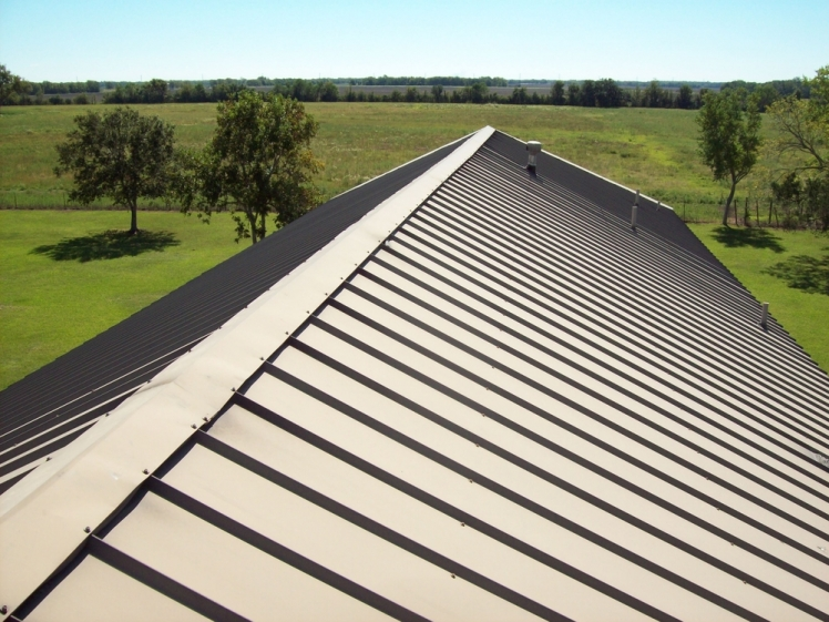 Discover Why You Should Choose a Metal Roof