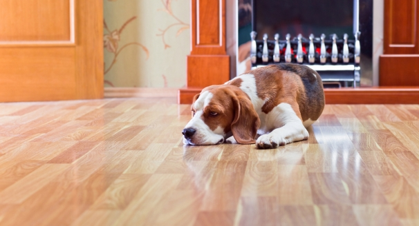 What are the Benefits of Hardwood Flooring?