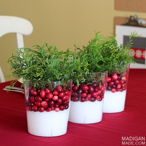 simple-winter-cranberry-centerpieces-01_zpsc3258b8f