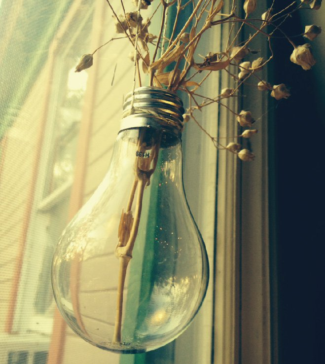 Light bulb hanging planter