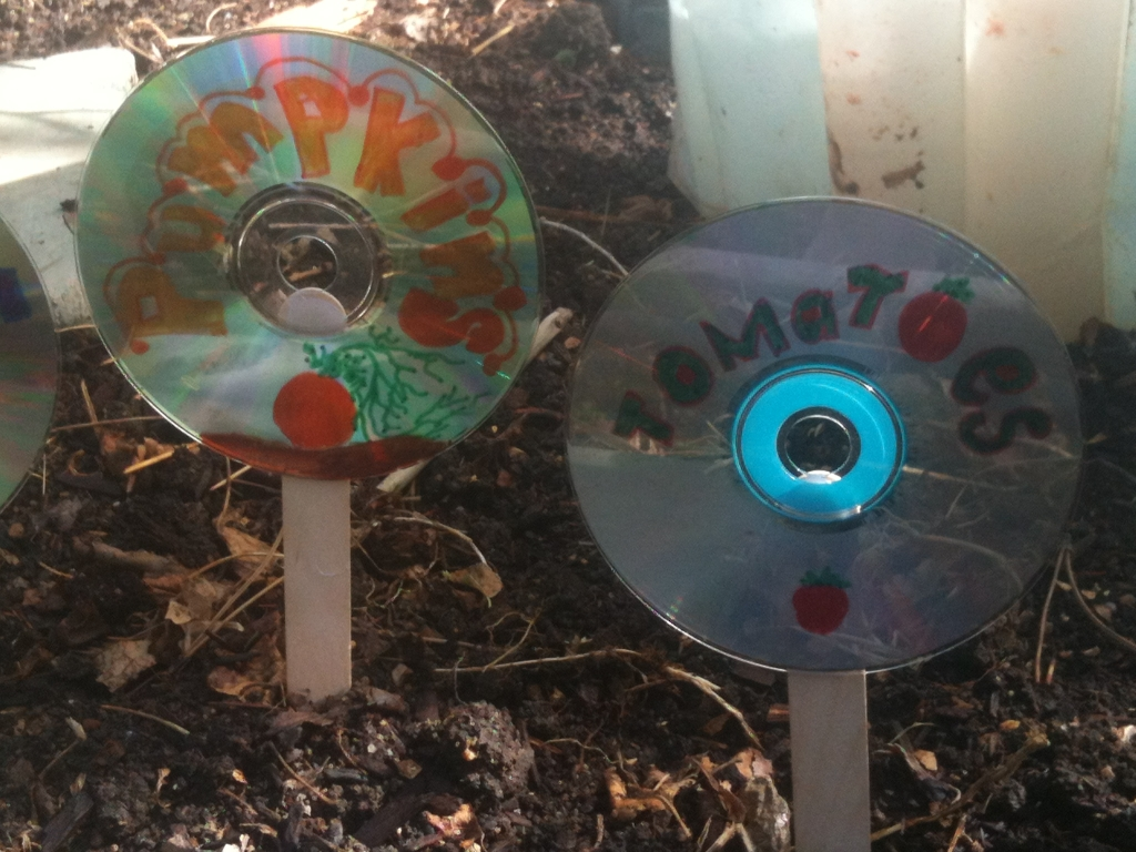 cd markers