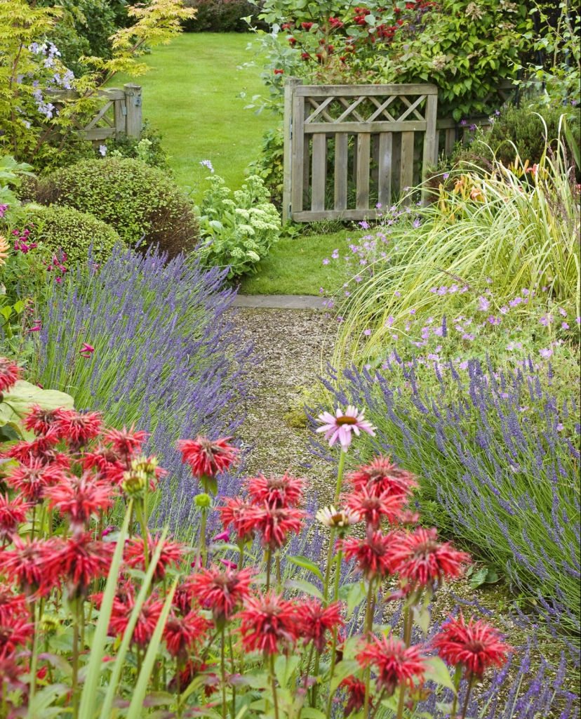 Create a winding garden path