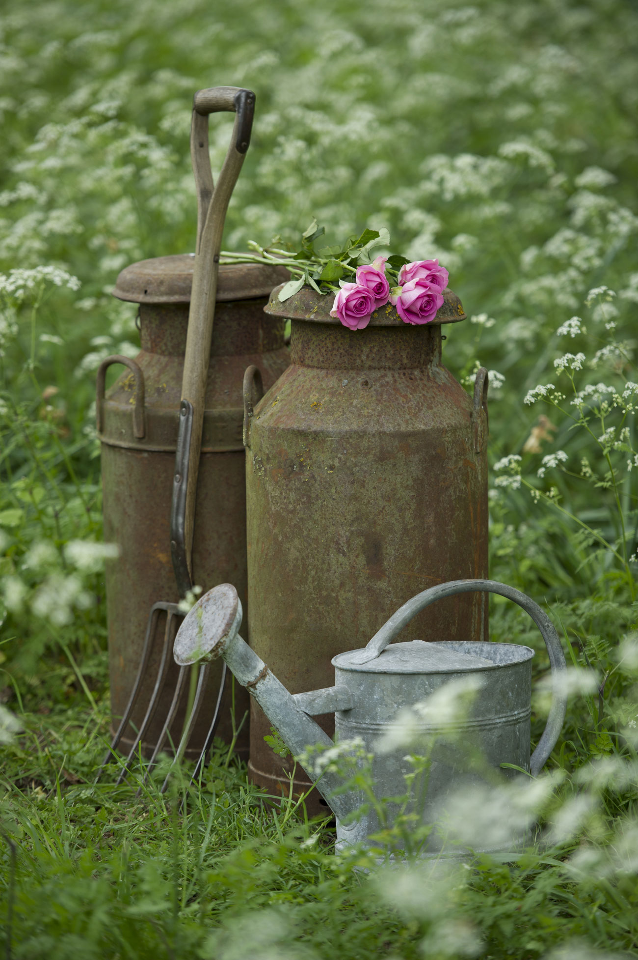 Charming Ideas to Create a Stunning Cottage-Style Garden - Reliable ...