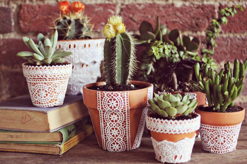 Lace Planters