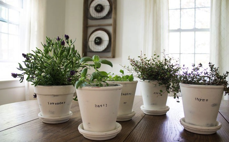 Stamped Planters