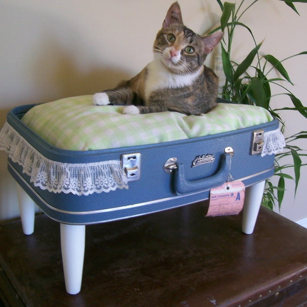 Create a vintage luggage bed for your pet