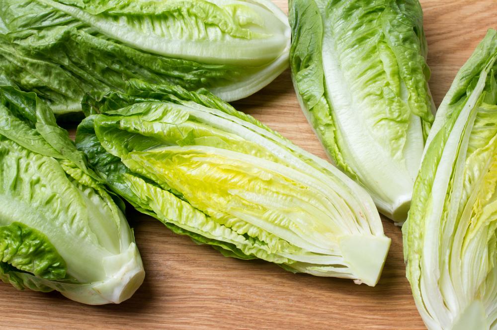 27. Lettuce Try Again