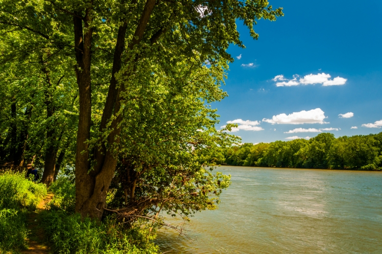 Potomac River, Maryland-West Virginia, USA