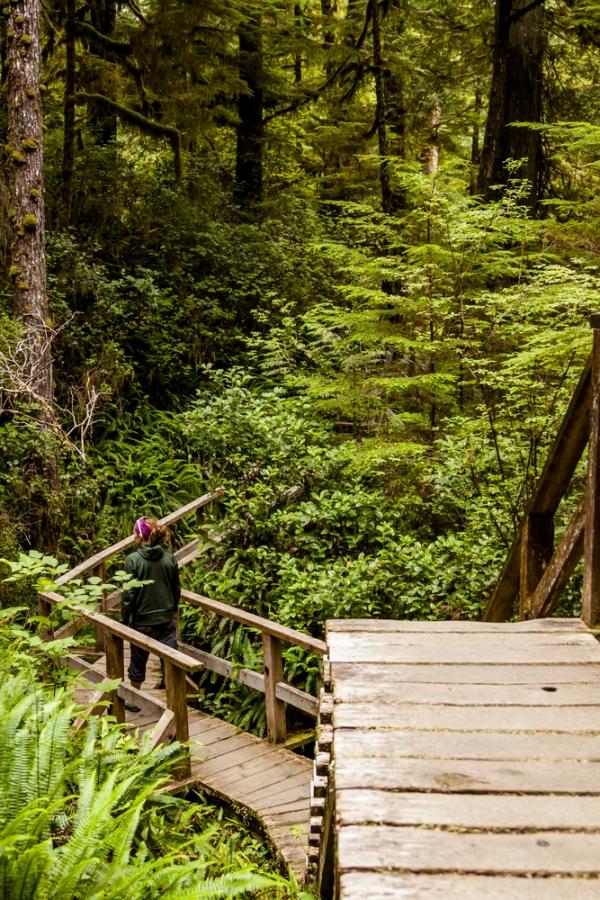 West Coast Trail, Vancouver Island, Canada