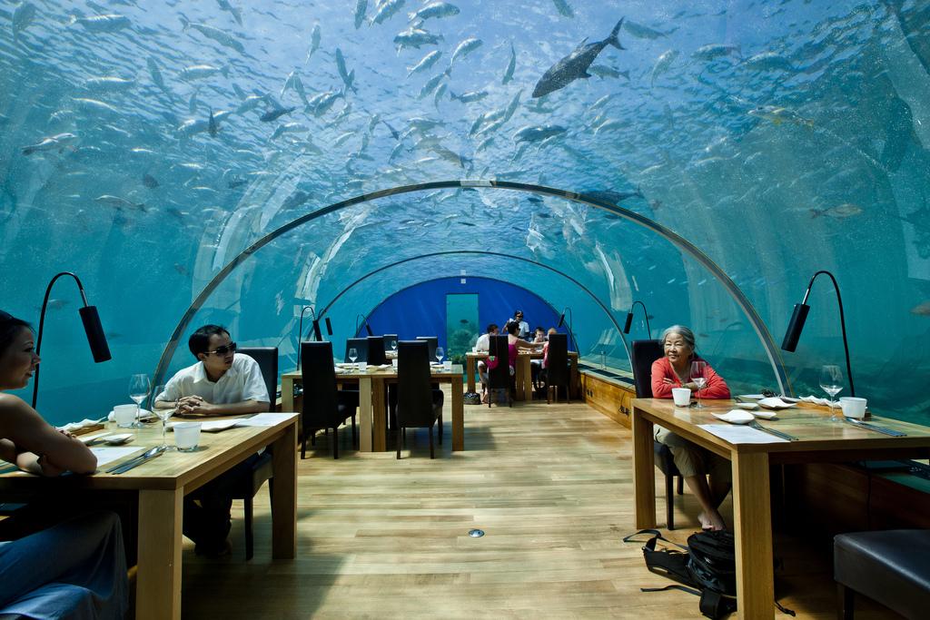 Ithaa Undersea Restaurant, Rangali Island, Maldives