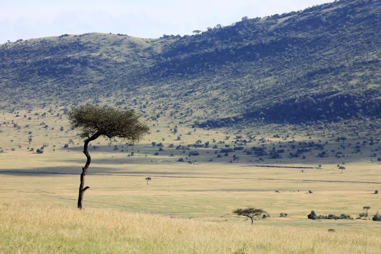 Kenya Lake System in the Great Rift Valley, Kenya