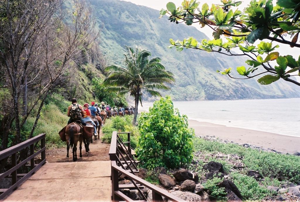 Kalaupapa Mule Ride and Tour on Moloka'i