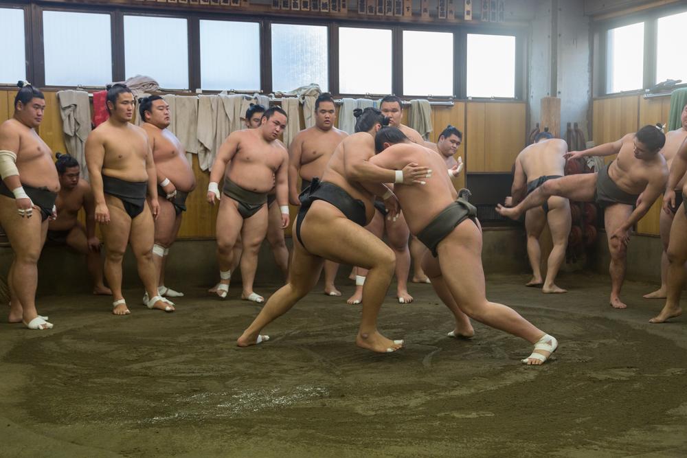 sumo wrestling, Tokyo