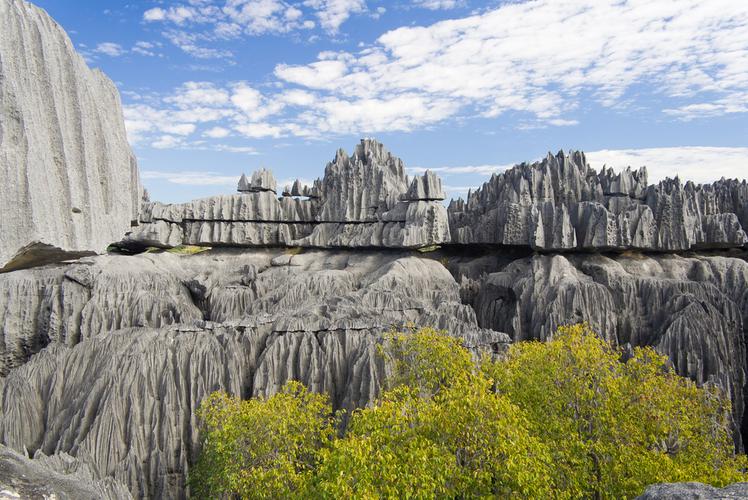 Tsingy Forest, Madagascar