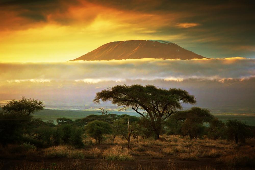 By Camel Trek to the Base of Mount Kilimanjaro