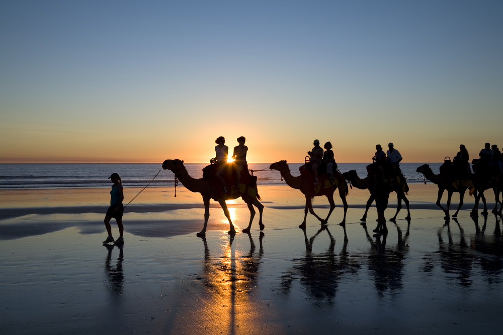 Ride a Camel on Cable Beach