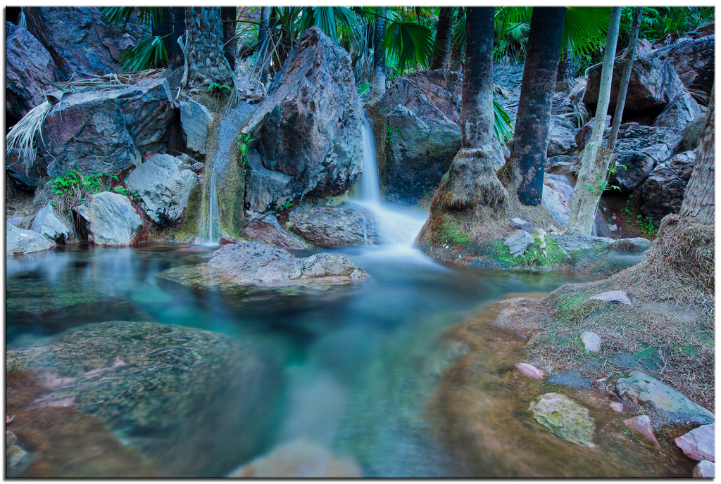 Take a dip in Zebedee Springs in El Questro