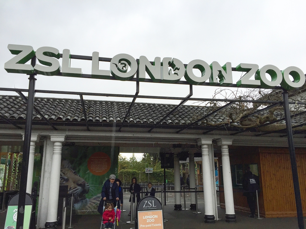 #12 London Zoo