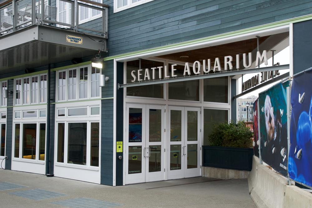 #8 Seattle Aquarium