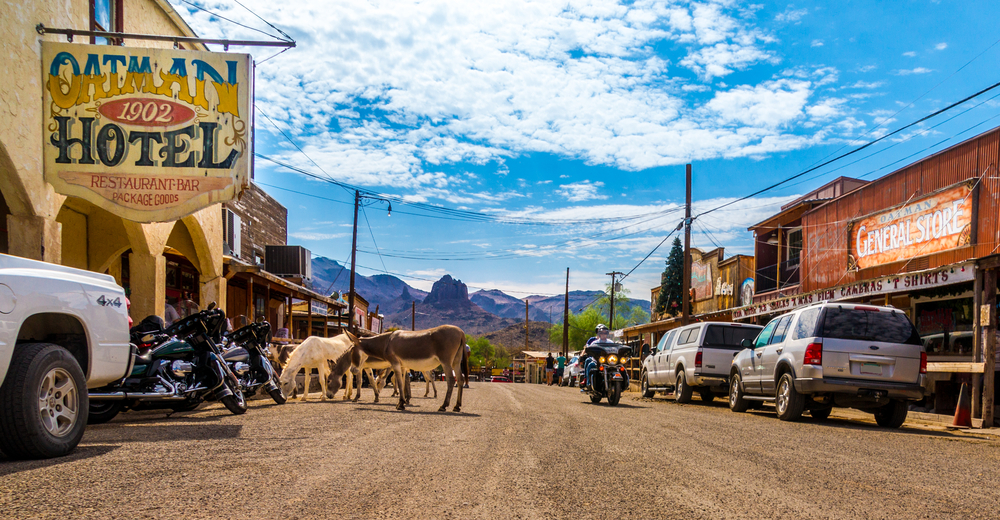 #8 Oatman, Arizona