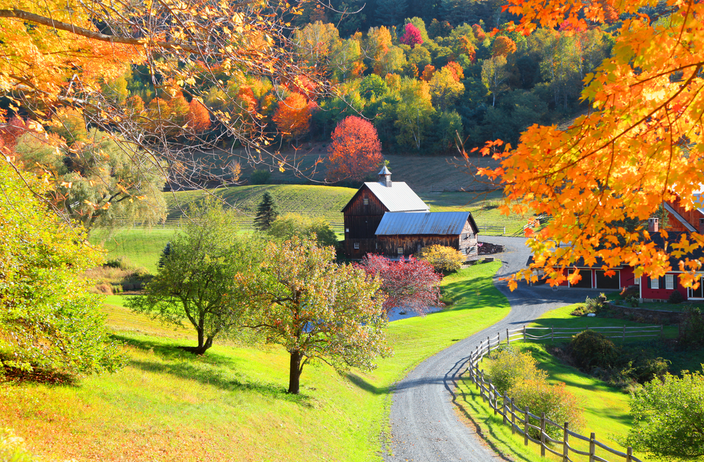 #6 Barnard, Vermont