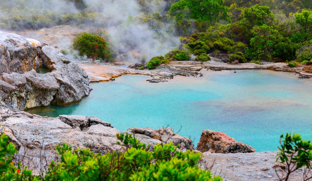 #4 Te Whakarewarewa Geothermal Valley