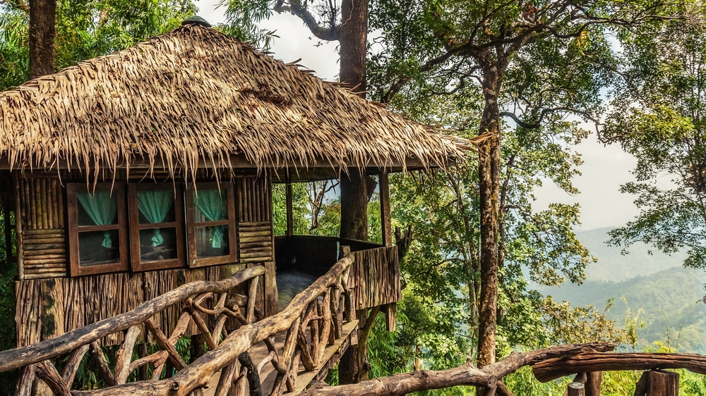 #6 Treehouse Lodge, Peru