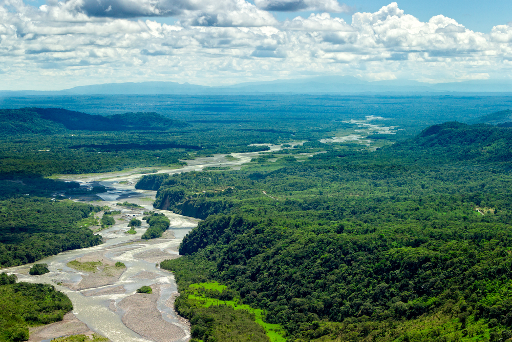 20. The Amazon Rainforest, Brazil