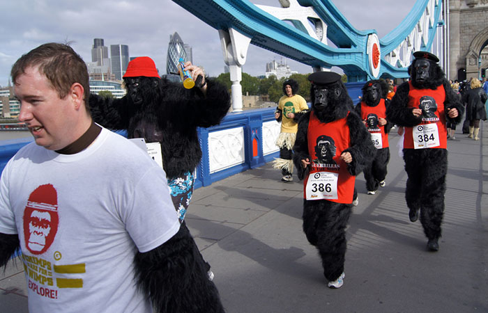 The Great Gorilla Run