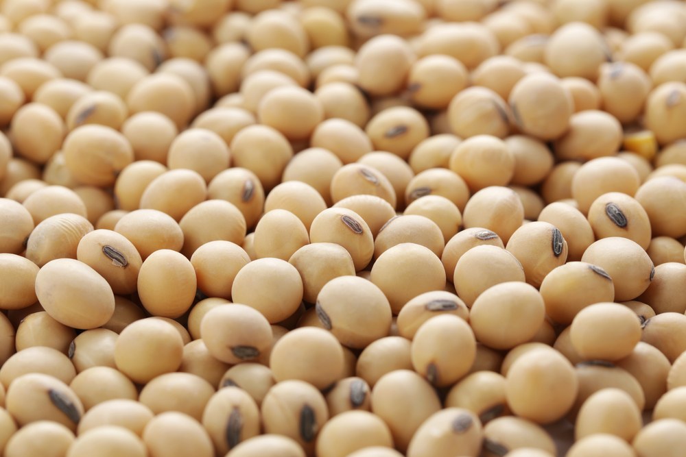 soy products can help to reduce your cancer risk
