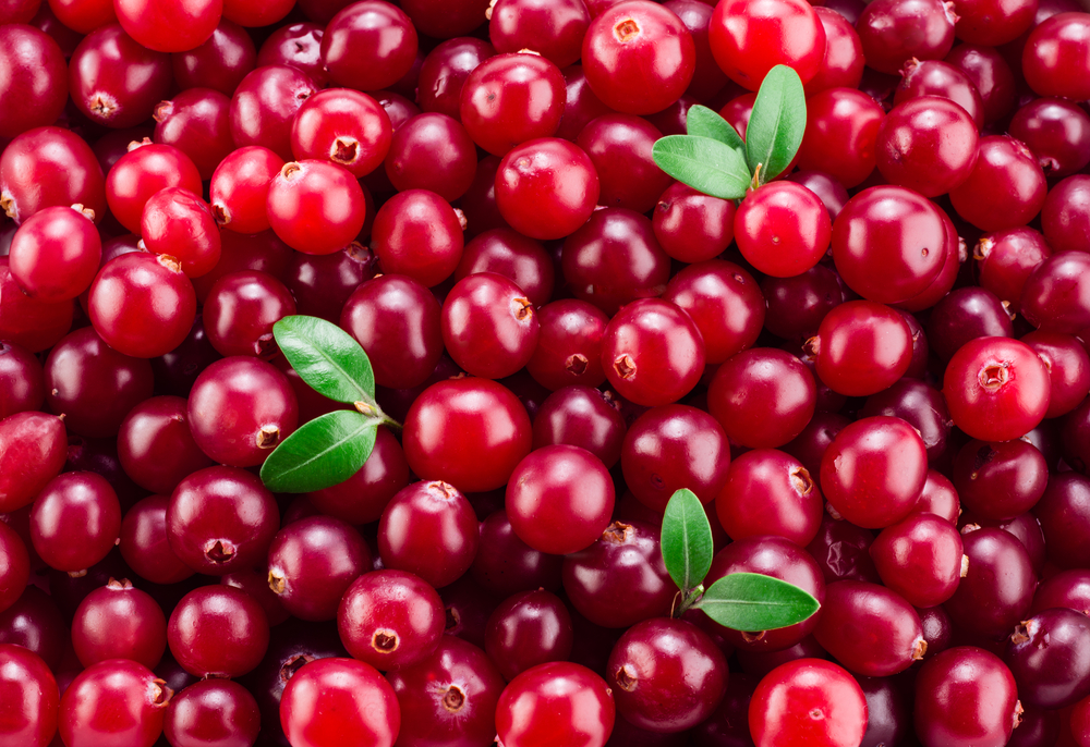 Cranberries Are Great for More Than Just Juice