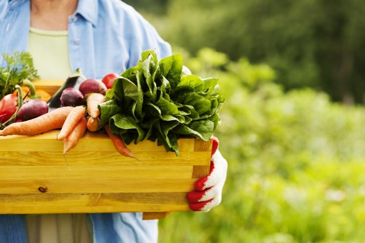 Eat more organic foods