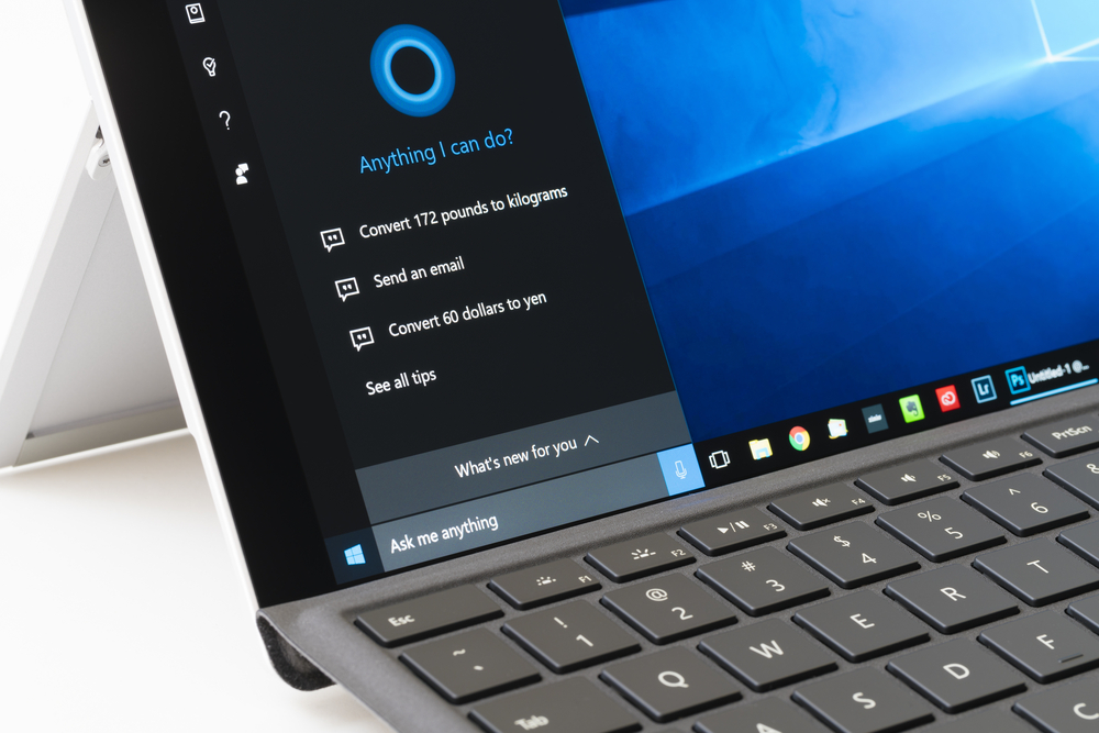 Microsoft Fights Back