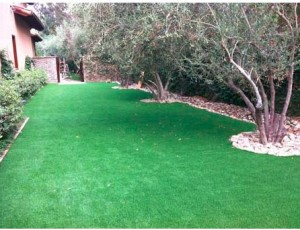 2013-12-12 10_52_26-EcoTurf_ Artificial Grass