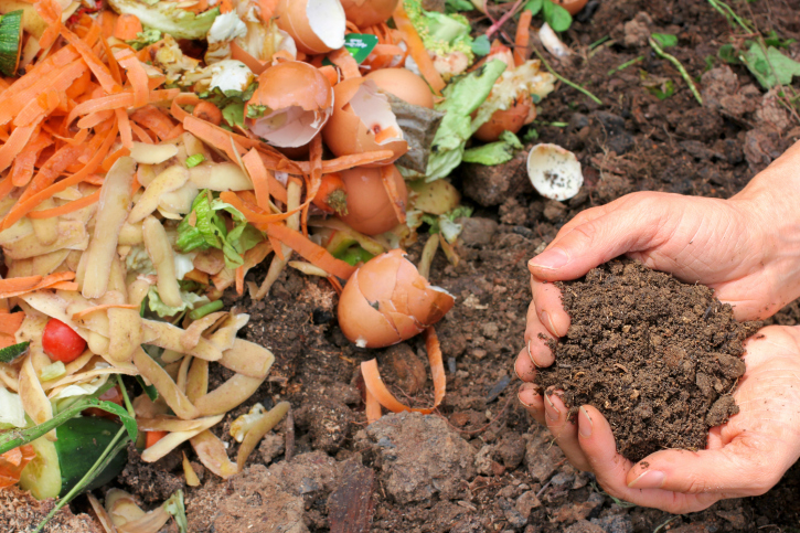 Tend to your Compost Pile