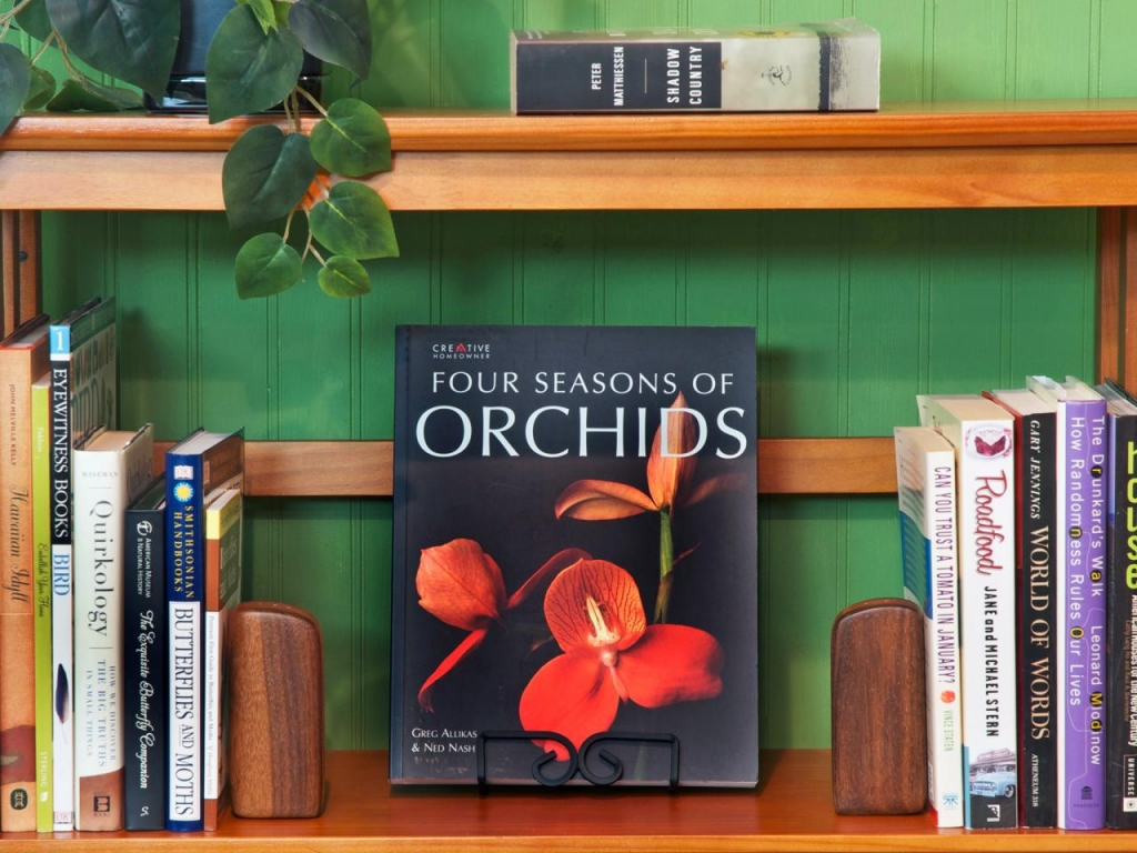 Original_ONeil-Sisters-Bookshelf-Basics-Cover-Story_h.jpg.rend.hgtvcom.1280.960