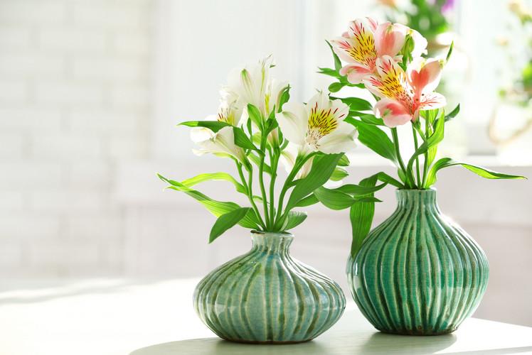 Pick the right size vase