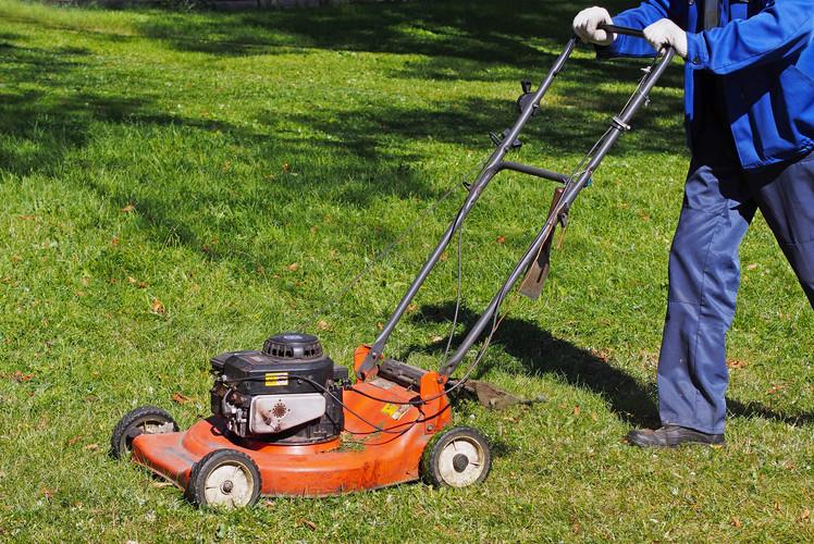 Sharpen lawn Mower and Cut