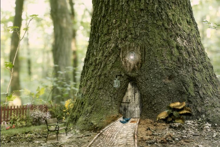 Fairy Visit