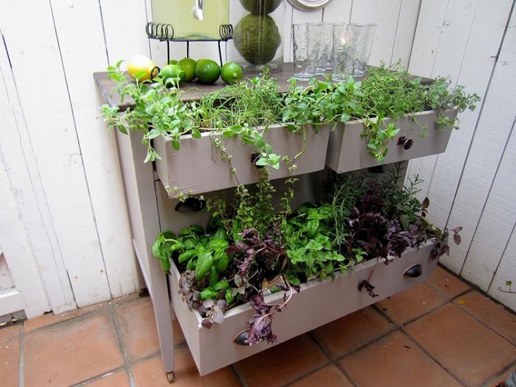 Dresser Drawer Planter