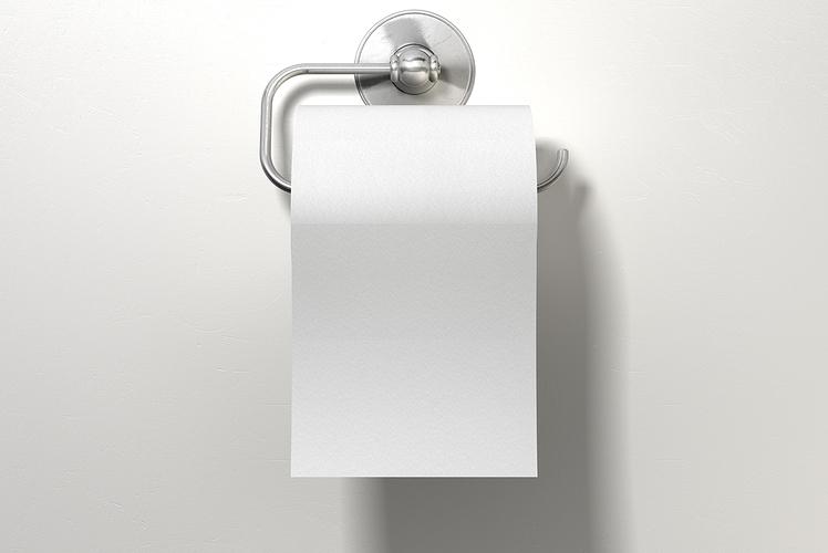 Make a toilet roll deodorizer