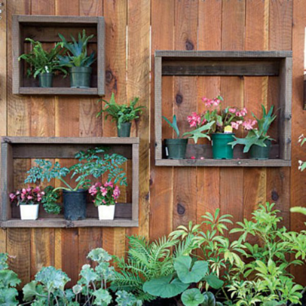 Potted Plant Shadow Boxes