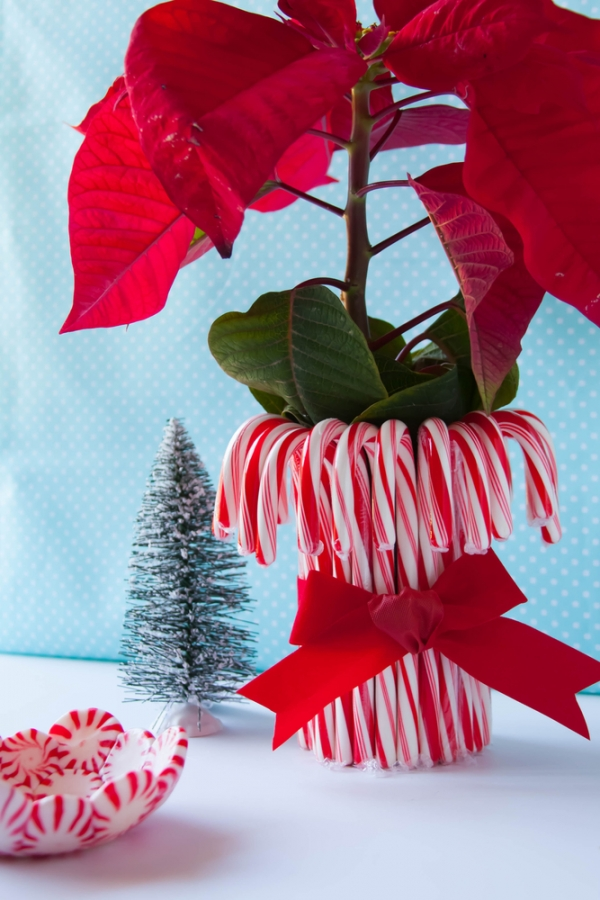 Candy cane vases