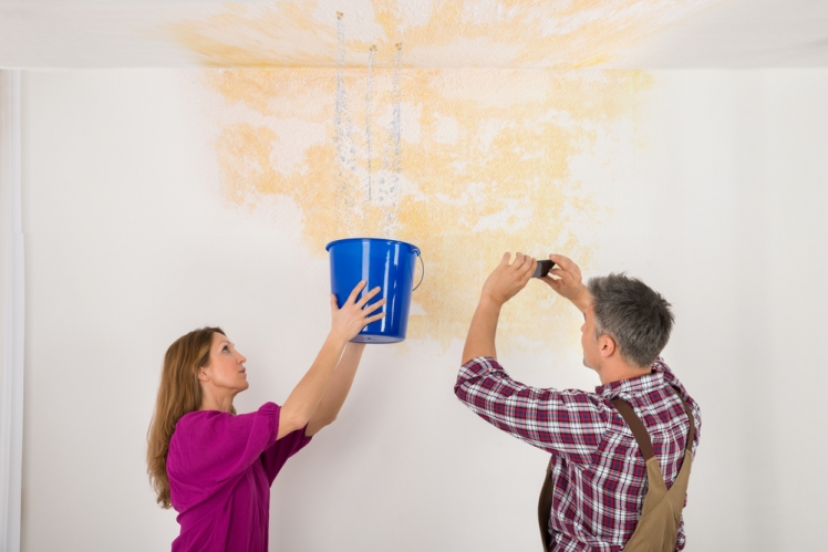 How to Find and Fix a Roof Leak