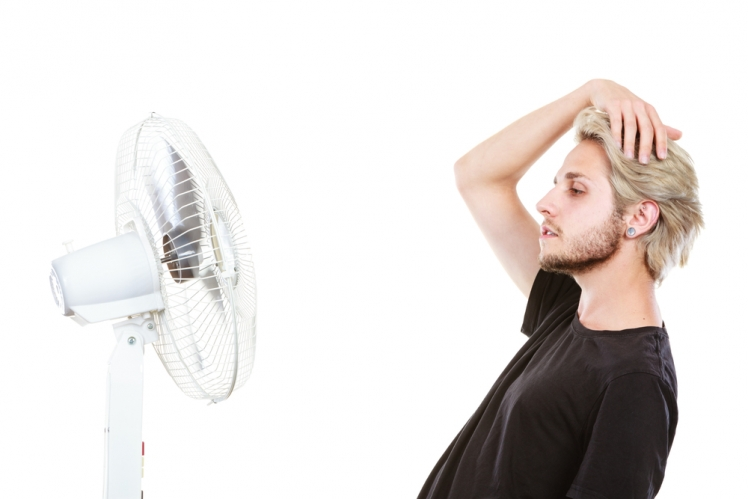 Which Type of Fan Do I Need?