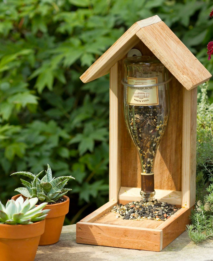 Bottle bird feeder